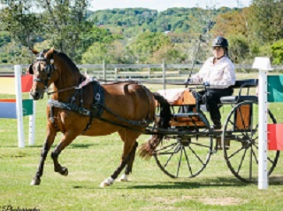 PA Speaker Information - Horse World Expo